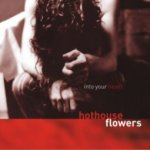 Album cover for Hothouse Flowers Into Your Heart released in 2004